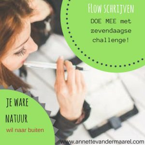 Gratis challenge Flow Schrijven