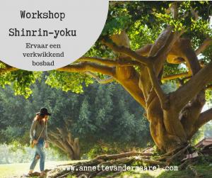 workshop shinrin-yoku