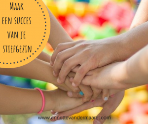 maak een succes van je stiefgezin